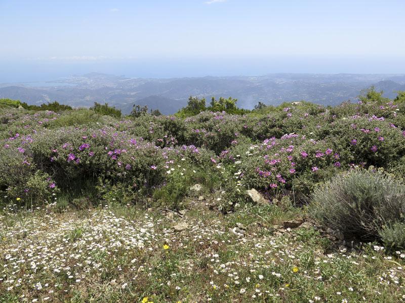 Blick vom Monte Idolo nach Arbatax