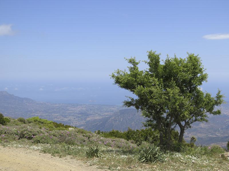 Aussicht vom Monte Idolo